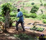 Mount Kenya Forest Group Nursery