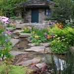 cottage garden for wildlife