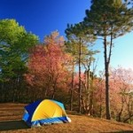 Camping – Why It's a Great Holiday for Your Kids