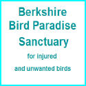 Berkshire Bird Paradise Sanctuary for injured and unwanted birds