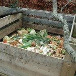 Turn your rubbish into compost