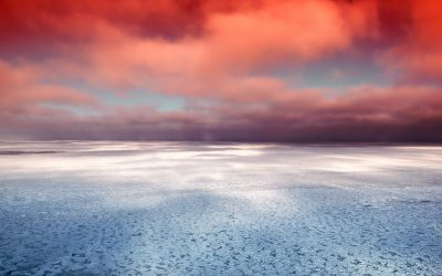 How Carbon Dioxide Emissions are Affecting Our Oceans
