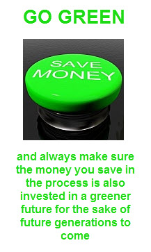 learn to be green and save money
