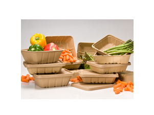 biodegradable food packaging that can be composted