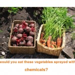 Would You Eat Your Plant Pesticide?
