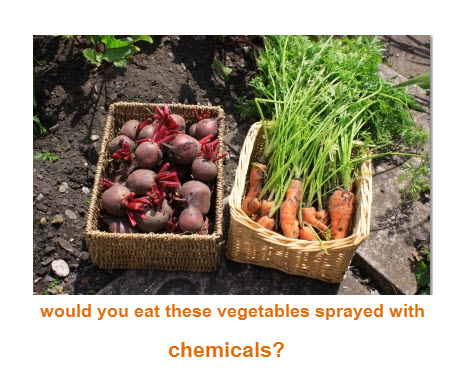 would you eat these vegetables if you knew they had chemicals on them?