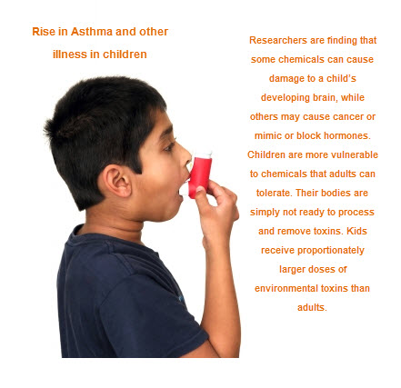 toxins in the home and environement are the cause of huge rises in asthma and other related illness