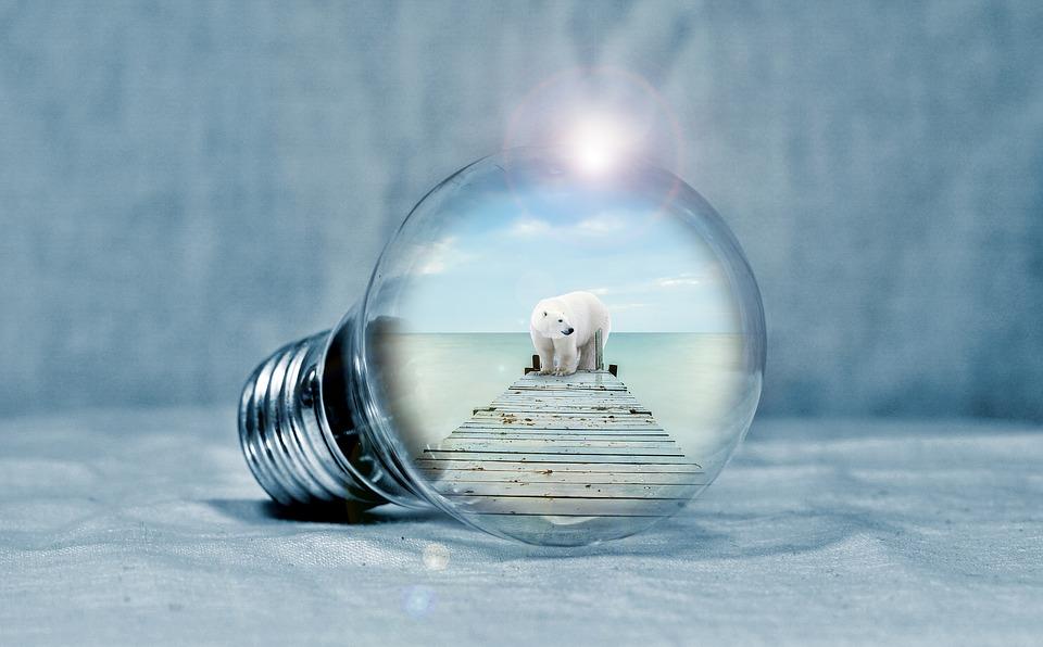New Energy Usage Statistics