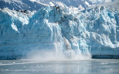 Refining Our Culinary Habits To Save The Melting Glaciers