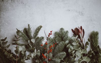 Ways to have a zero-waste Christmas and save the world