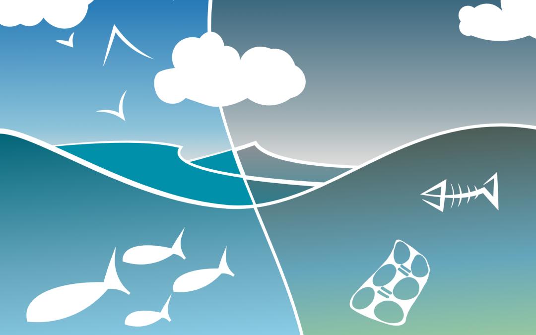 Ocean Contamination